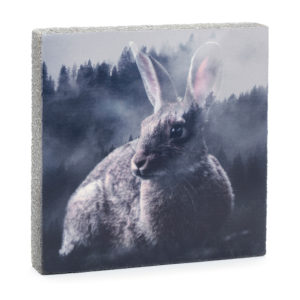 Lost Found Art Block Forest Bunny image home goods
